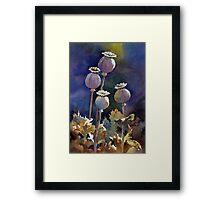Poppy Seed Heads Framed Print