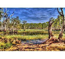 """Billabong at Kakadu"" Photographic Print"