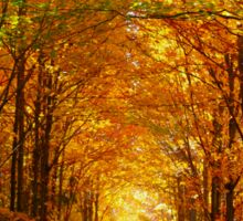 Autumn Light and Leaf Painting Sticker