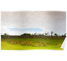 Big Cypress Preserve 1 Poster