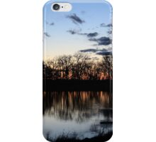 Sunset at the Park iPhone Case/Skin