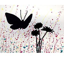 Butterfly Splash Photographic Print