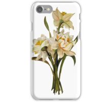 Double Narcissi In A Bouquet Isolated iPhone Case/Skin