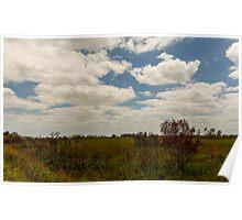 Big Cypress Preserve 6 Poster