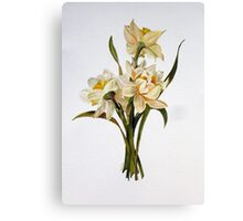 Double Narcissi In A Bouquet Canvas Print