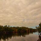 Tamiami Trail 2 by Carson Wilcox