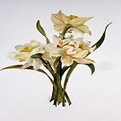 Double Narcissi In A Bouquet by taiche