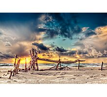 Driftwood sculpture (Prerow) Photographic Print