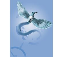 Hunger Games Articuno Photographic Print