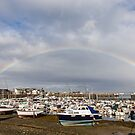 Rainbow over the Harbour by Karen Millard