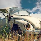 Herbie  VW Bug  by Malena Fryar
