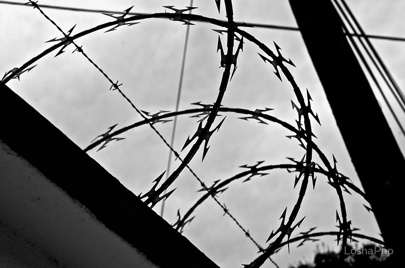 Barb Wire by LoshaPho