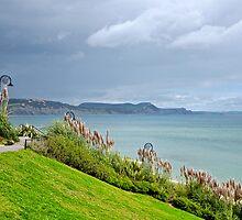 Pampas Grass ~ Lyme Regis  by Susie Peek