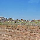 Scenery along Gibb River road, Kimberley, Western Australia   by Margaret  Hyde