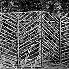 Ecuadoran Gate by LoshaPho