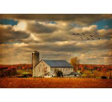 South For The Winter Photographic Print