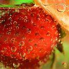 Bubbling Fruit by julieapearce
