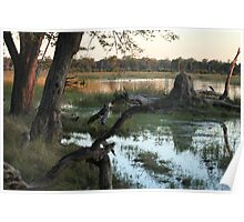 Waterhole at Sunset Poster