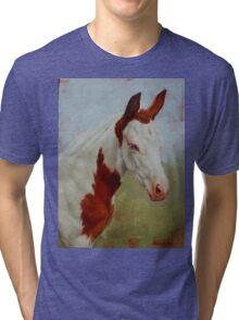 Pretty Baby-Paint Foal Portrait Tri-blend T-Shirt