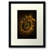 Golden flames Framed Print