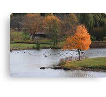A Perfect Fall Frame Canvas Print