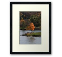 Autumn at its Best Framed Print
