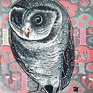 Sooty Owl by Melanie Pople