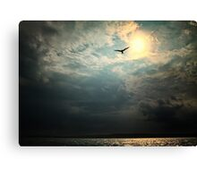 Bird in Sky Canvas Print