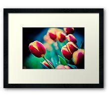 Flowerscapes - Tulip Framed Print