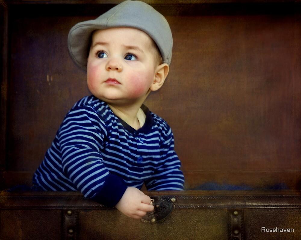 """ Parker , 7 months old "" by Rosehaven"