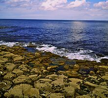 The Giant's Causeway and the Sea by Lisa Hafey