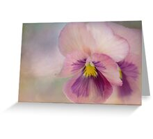 precious pansies Greeting Card