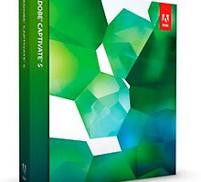 Adobe captivate tutorial in sydney by antoniusgre