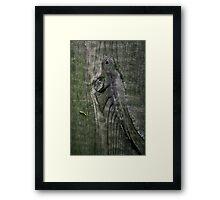 Jurrasic planking Framed Print