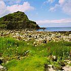 Giant's Causeway, Northern Ireland by Lisa Hafey