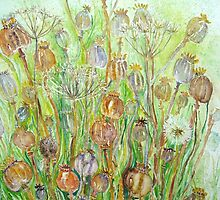 Poppy Seedheads by Nicky Perryman