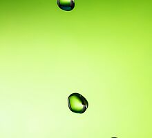 Green water drop by Gundars Helds
