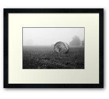 Hayfields of Arkansas Framed Print