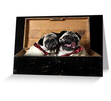 Pugs in a Box Greeting Card