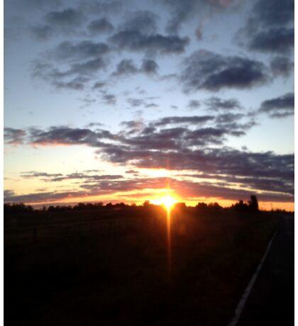 Sunset Driver Sticker