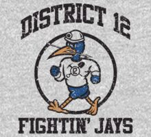 District 12 Fightin' Jays Kids Clothes