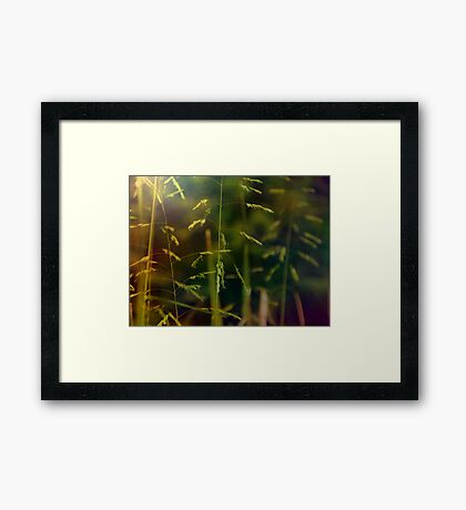 Color shift Framed Print