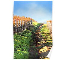 Late Autumn View of Napa Valley 3 Poster