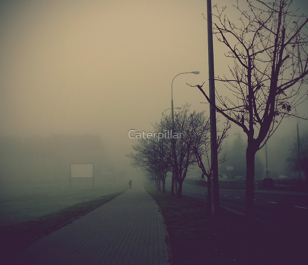 Fog in the city by Caterpillar