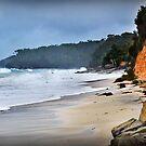 Storm Beach... by Les Boucher