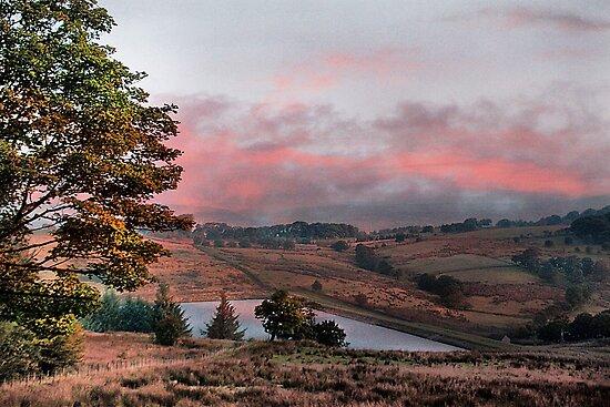 Before sunrise  by Irene  Burdell