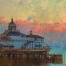 Eastbourne Pier 2 by ElsieBell