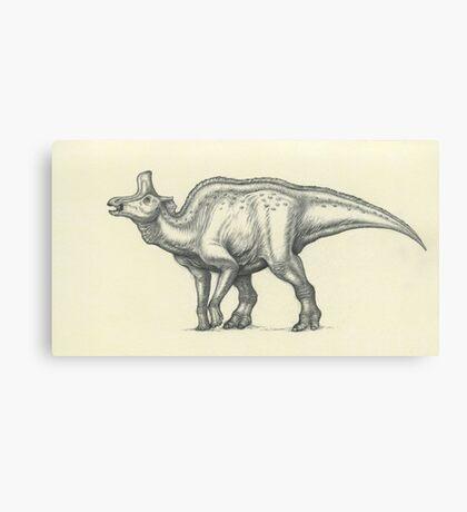 Lambeosaurus lambei Canvas Print