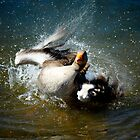 Havin a wash by Simon Duckworth