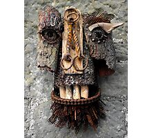 Bridle Mask ( red beard ) Photographic Print